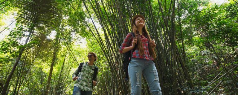 Kaksi hymyilevää nuorta kävelee reppus selässä bambumetsässä