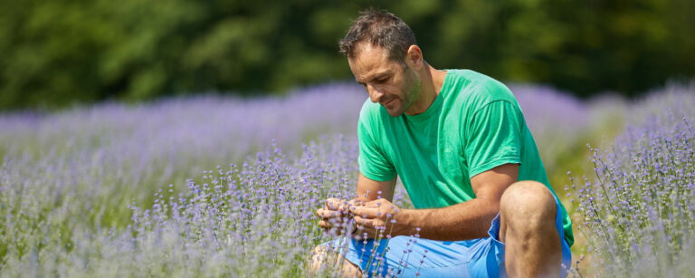 Man sitting alone in a lavender field